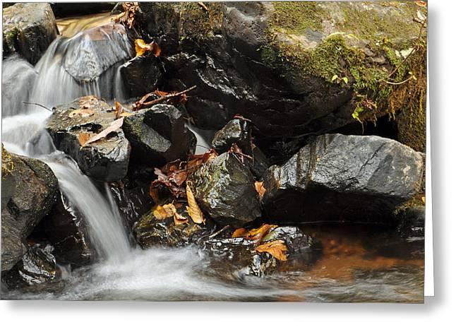 Fall Photographs Greeting Cards - Tumbling Water in Big Crabtree Creek Norrth Carolina Greeting Card by Bruce Gourley