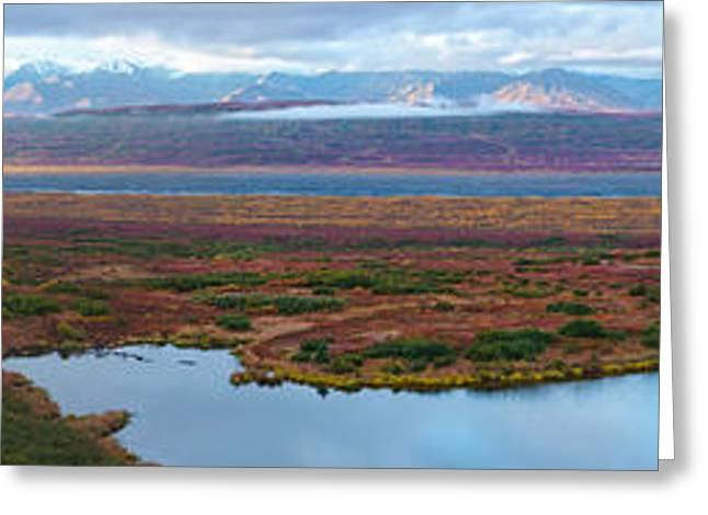 Denali National Park Greeting Cards - Tundra Landscape, Denali National Park Greeting Card by Panoramic Images