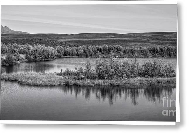 Pond Photographs Greeting Cards - Tundra Pond Reflections Greeting Card by Priska Wettstein