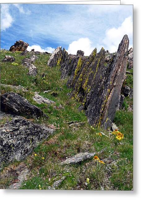 Mummy Range Greeting Cards - Tundra Rocks Greeting Card by Tranquil Light  Photography