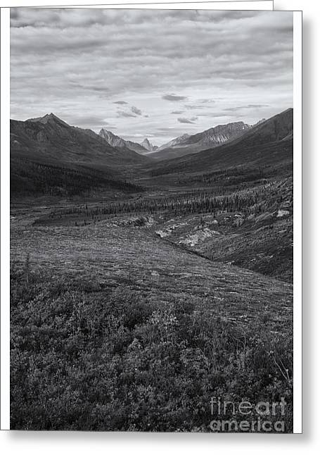 Tombstones Greeting Cards - Tundra Valley Greeting Card by Priska Wettstein