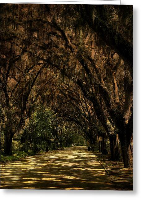 Tunnel   Greeting Card by Mario Celzner