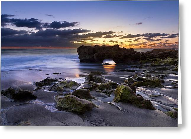 Hobe Sound Greeting Cards - Tunnel of Light Greeting Card by Debra and Dave Vanderlaan