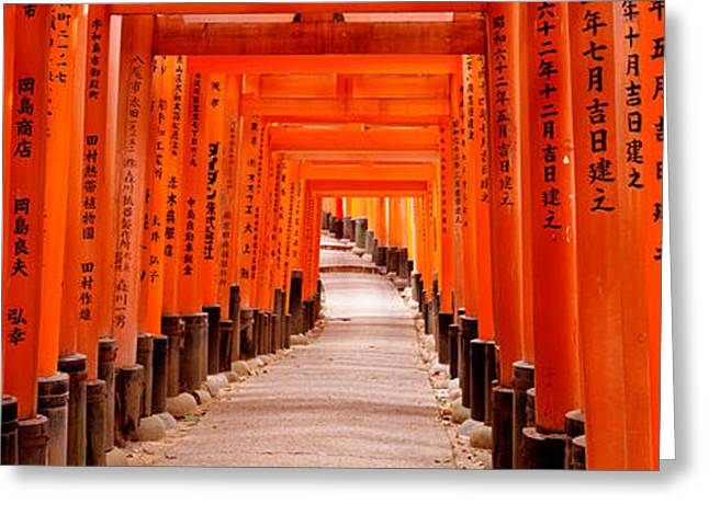 Torii Greeting Cards - Tunnel Of Torii Gates, Fushimi Inari Greeting Card by Panoramic Images
