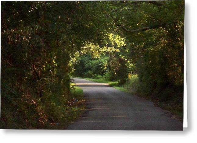 Southern Oak Trees Of The Old South Greeting Cards - Tunnel of Trees and Light III Greeting Card by Lanita Williams