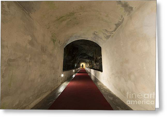 Illuminate Greeting Cards - Tunnel with red carpet Greeting Card by Mats Silvan