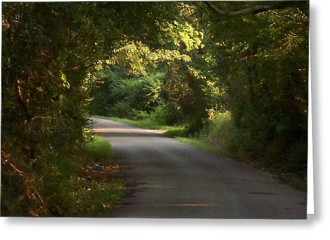 Southern Oak Trees Of The Old South Greeting Cards - Tunnels of Trees and Light II Greeting Card by Lanita Williams
