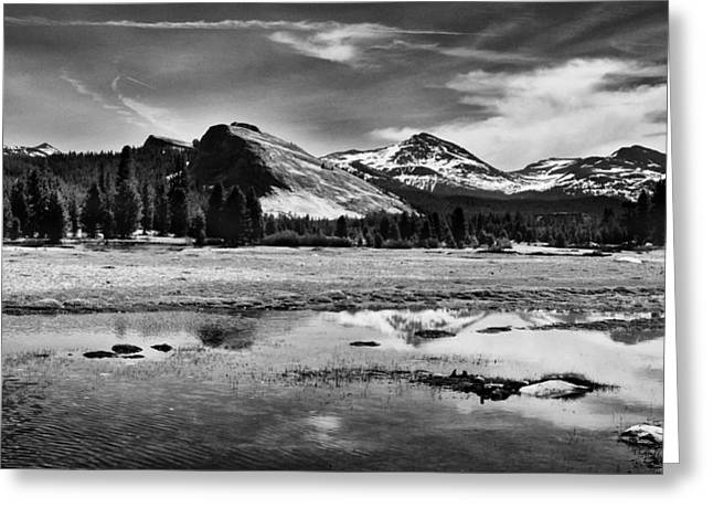 Cloudy Days Greeting Cards - Tuolumne Meadows and Lembert Dome Greeting Card by Cat Connor