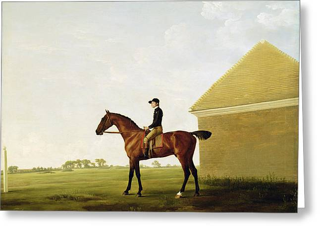 Turf Greeting Cards - Turf Greeting Card by George Stubbs