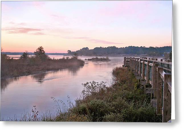 Florida Panhandle Greeting Cards - Turkey Creek Nature Preserve  Greeting Card by JC Findley