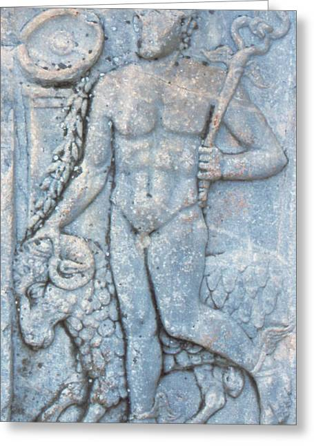 Turkey, Ephesus A Roman Carving Depicts Greeting Card by Jaynes Gallery