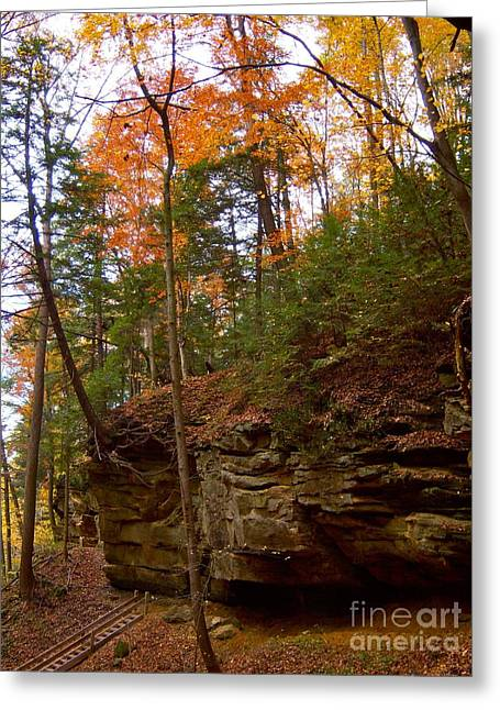 Turkey Run State Park Greeting Cards - Turkey Run Fall Greeting Card by Pamela Clements