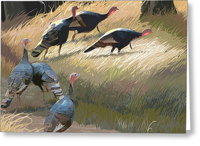 Meleagris Gallopavo Greeting Cards - Turkeys in the Fall Sun Greeting Card by Pam Little