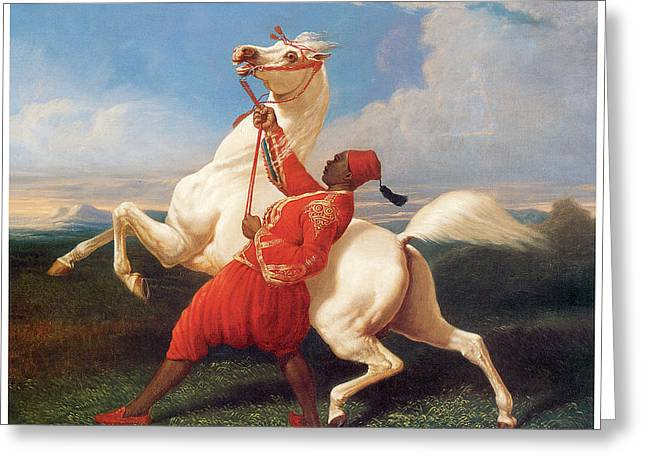 White Stallion With Rider Greeting Cards - Turkish Groom Holding an Arab Stallion Greeting Card by Carle Vernet
