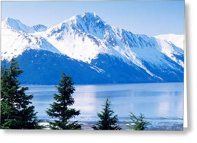 Snow Capped Greeting Cards - Turnagain Arm Girdwood Ak Usa Greeting Card by Panoramic Images