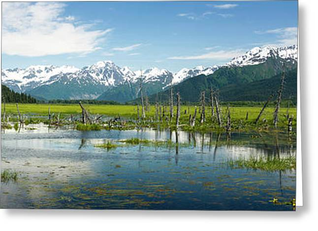 Turnagain Arm With Chugach Mountains Greeting Card by Panoramic Images