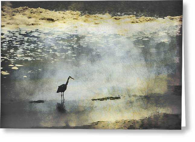 Great Egret Greeting Cards - Turning of the Tide Greeting Card by Carol Leigh
