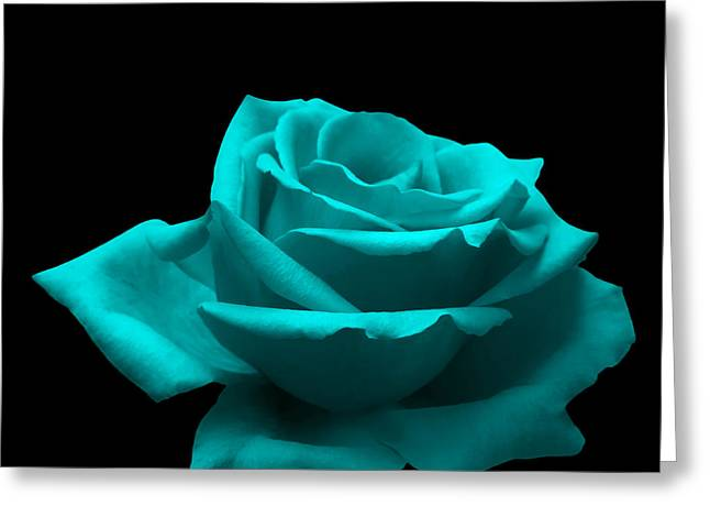 Fragility Photographs Greeting Cards - Turquoise Rose Greeting Card by Wim Lanclus