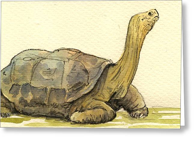 Tortoise Greeting Cards - Turtle galapagos Greeting Card by Juan  Bosco