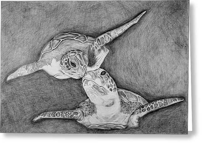 Saltlife Greeting Cards - Turtle love Greeting Card by Edward Johnston
