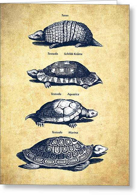Reptiles Digital Art Greeting Cards - Turtles - Historiae Naturalis - 1657 - Vintage Greeting Card by Aged Pixel