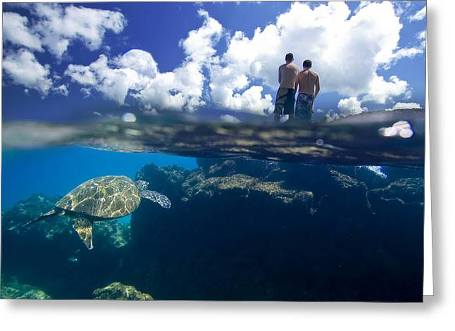 Photographers Fine Art Greeting Cards - Turtles View Greeting Card by Sean Davey