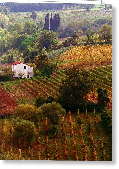 Sienna Digital Art Greeting Cards - Tuscan Autumn Greeting Card by John Galbo