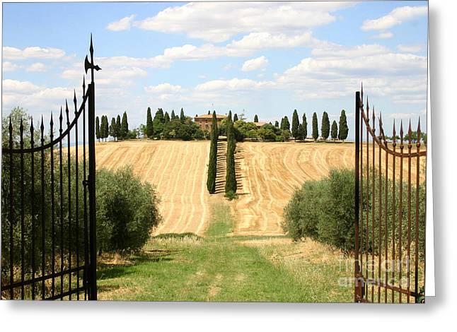 Tuscan Estate Greeting Card by Holly C. Freeman