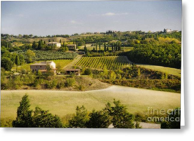 Tuscan Hills Greeting Cards - Tuscan Landscape Greeting Card by Jim  Calarese