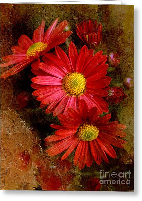 A New Focus Photography Greeting Cards - Tuscan Love Greeting Card by A New Focus Photography