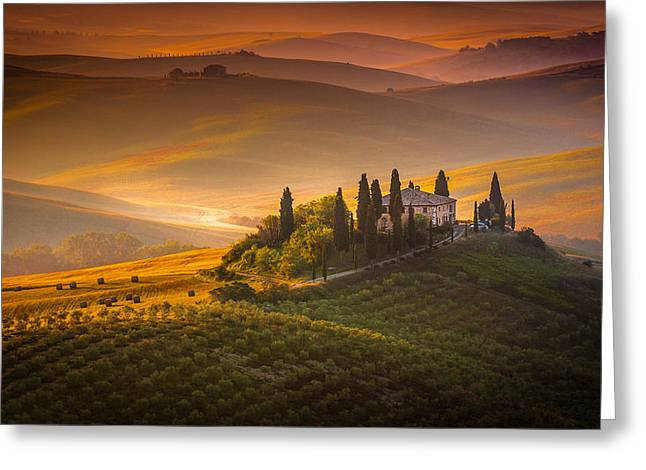 Olive Oil Greeting Cards - Tuscan morning Greeting Card by Stefano Termanini