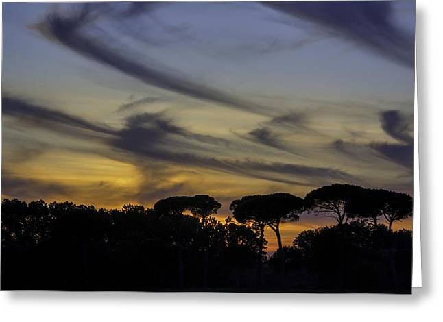 Tuscan Sunset Greeting Cards - Tuscan Sunset Greeting Card by Joan McLean