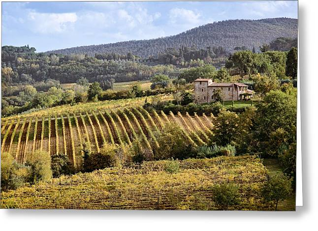Vineyard Scene Greeting Cards - Tuscan Valley Greeting Card by Dave Bowman