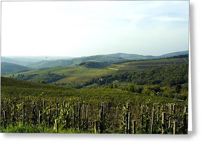 Chianti Digital Art Greeting Cards - Tuscan vineyard Greeting Card by Wayne Sloop