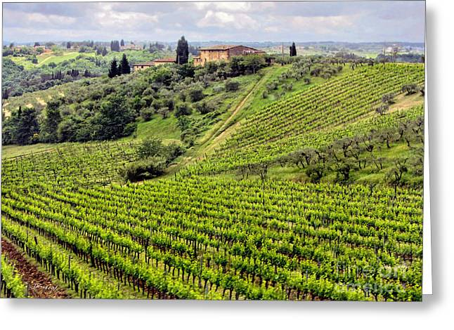 Tuscan Traditions Greeting Cards - Tuscany-Italy Greeting Card by Jennie Breeze