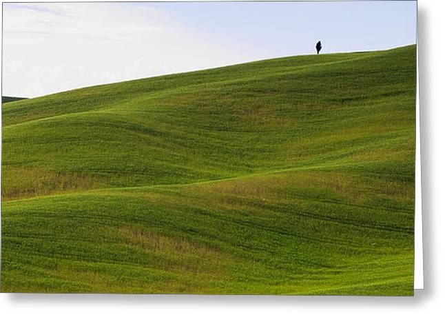 Chianti Hills Greeting Cards - Tuscany landscape Greeting Card by Ivan Slosar