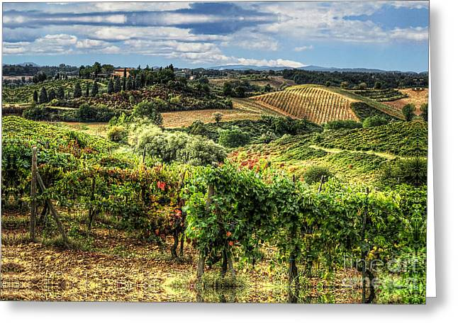 Rolling Hills Vinyards Greeting Cards - Tuscany Landscape Greeting Card by Tom Dale