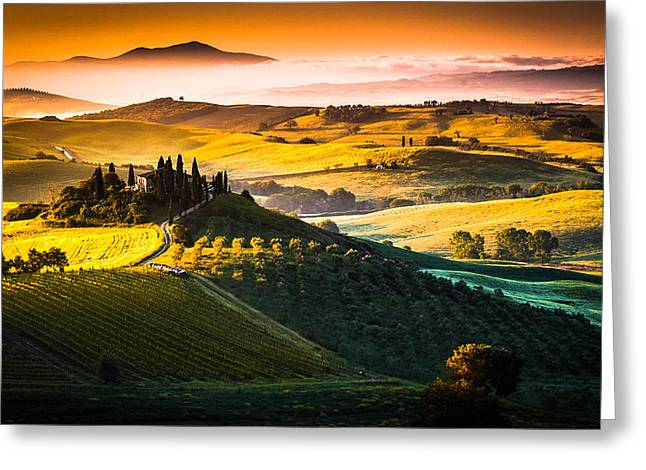 Olive Oil Greeting Cards - Tuscany morning Greeting Card by Stefano Termanini