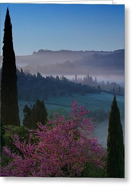 Chianti Greeting Cards - Tuscany Sunrise Greeting Card by Blake Desaulniers