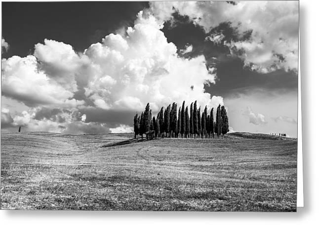 Sienna Italy Greeting Cards - Tuscany Greeting Card by Tony Murray