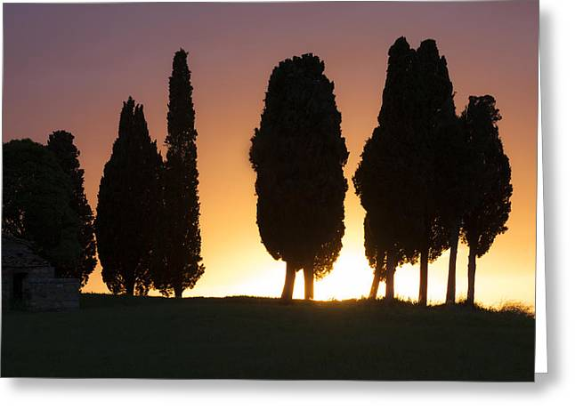 Backlit Greeting Cards - Tuscany- Val dOrcia Greeting Card by Joana Kruse