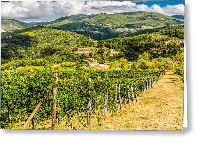 Wine Scene Greeting Cards - Tuscanys countryside Greeting Card by Laco Hubaty