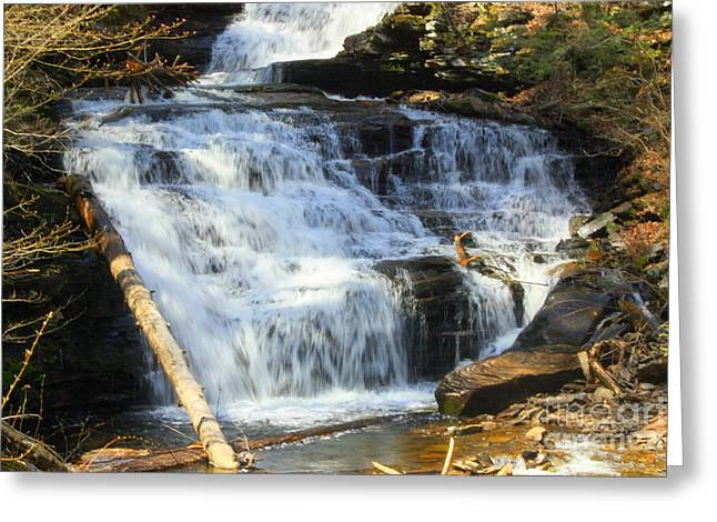 Tuscarora Greeting Cards - Tuscarora Falls Greeting Card by Patti Whitten
