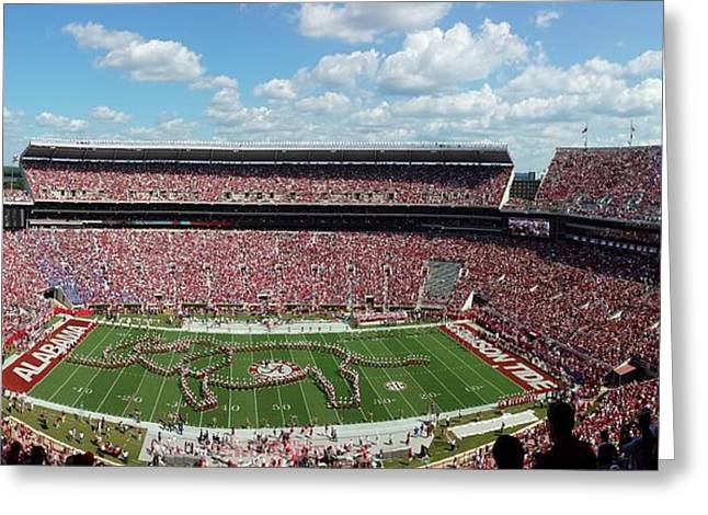 Bryant Denny Greeting Cards - Tusk Greeting Card by Kenny Glover