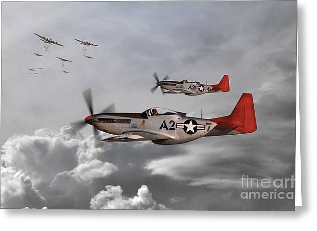 Tuskegee Airman Greeting Cards - Tuskegee Airmen Greeting Card by J Biggadike