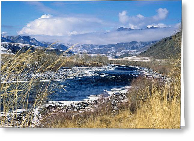 Tuva Greeting Card by Anonymous