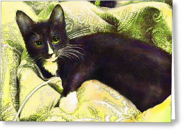 Tuxedo Greeting Cards - Tuxedo Cat Greeting Card by Jane Schnetlage