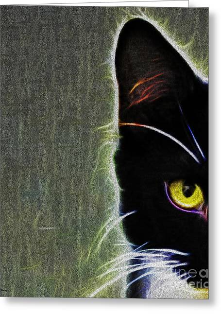 Glowing Mixed Media Greeting Cards - Tuxedo Greeting Card by Cheryl Young