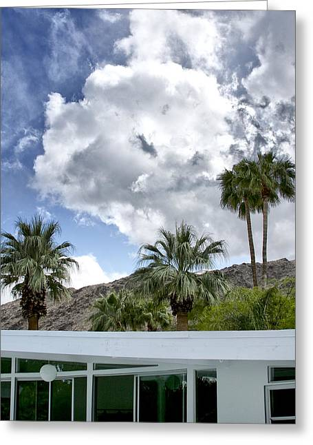 Tuxedo Greeting Cards - TUXEDO CIRCLE AFTERNOON Palm Springs Greeting Card by William Dey