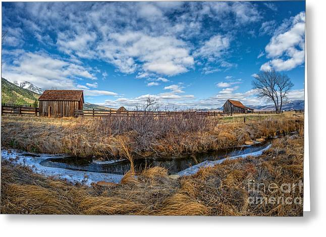 Washoe County Greeting Cards - Twaddle Ranch Autumn Greeting Card by Dianne Phelps